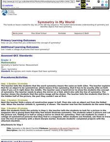 Symmetry in My World Lesson Plan