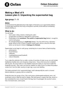 Lesson Plan: Unpacking the Supermarket Bag Lesson Plan