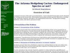The Arizona Hedgehog Cactus: Endangered Species or not?: Biology, Plants Lesson Plan