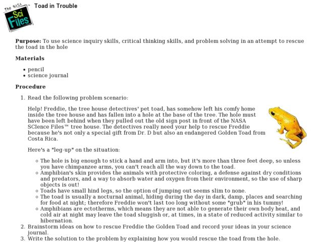 Toad in Trouble Lesson Plan