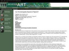Can Chromatography Separate A Pigment? Lesson Plan