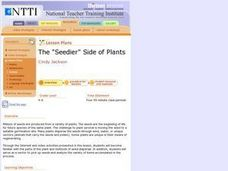"The ""Seedier"" Side of Plants Lesson Plan"