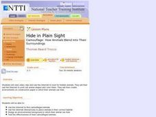 Hide In Plain Sight Lesson Plan