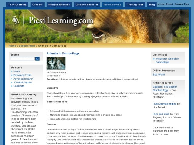 Animals In Camouflage Lesson Plan