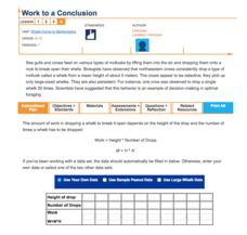 Work to a Conclusion—Whelk-Come to Mathematics Lesson Plan