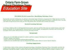Lesson Five: Identifying Christmas Trees Lesson Plan