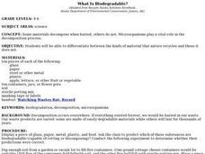 What Is Biodegradable? Lesson Plan