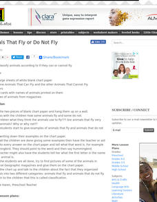 Animals That Fly or Do Not Fly Lesson Plan