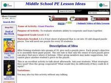 Giant Puzzles Lesson Plan