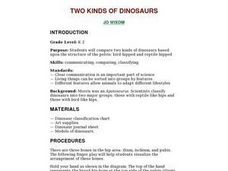 Two Kinds of Dinosaurs Lesson Plan