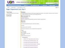 Eggs, Experiment Lab, Day 3 Lesson Plan