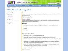 Adaptation Scavenger Hunt Lesson Plan