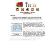 Tulips:  Predicting the Arrival of Spring Lesson Plan