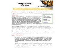 Adaptations:  Fit For Survival Lesson Plan