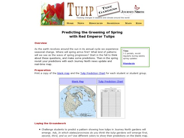 Predicting the Greening of Spring With Red Emperor Tulips Lesson Plan
