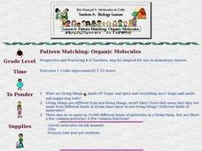 Pattern Matching:  Organic Molecules Lesson Plan