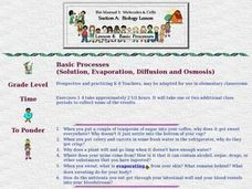 Basic Processes Lesson Plan