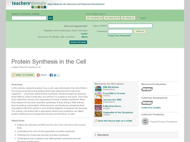 Protein Synthesis in the Cell Lesson Plan