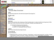 Bruchid Investigations: Bruchid Development Investigations Lesson Plan