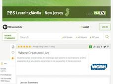 Where Creatures Live Lesson Plan