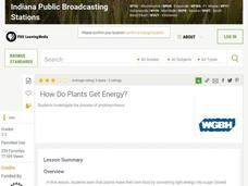 How Do Plants Get Energy? Lesson Plan